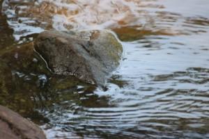 Foto: sterntaler62 /pixelio.de